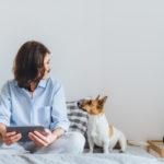 chiriași cu animale de companie și 3 motive pentru care să-i accepți